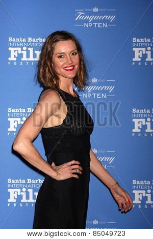 SANTA BARBARA - JAN 29:  Erinn Hayes at the Santa Barbara International Film Festival - Cinema Vanguard Award at a Arlington Theater on January 29, 2015 in Santa Barbara, CA