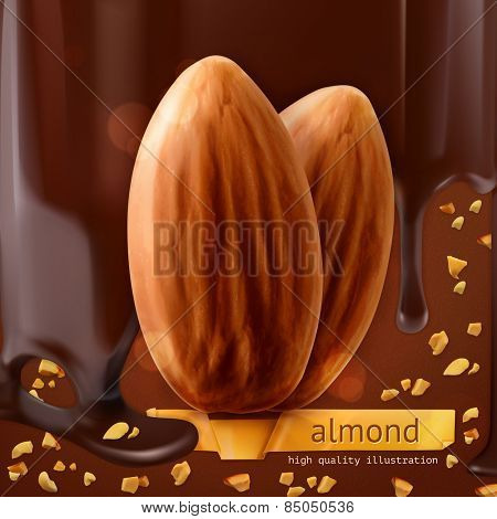 Almonds, vector background