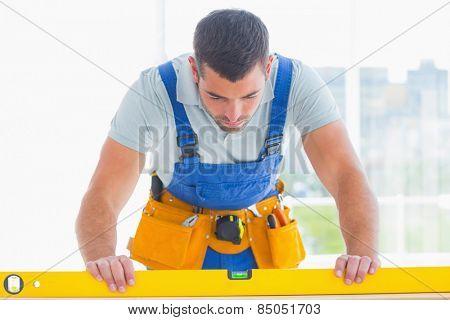 Male carpenter using spirit level in bright office