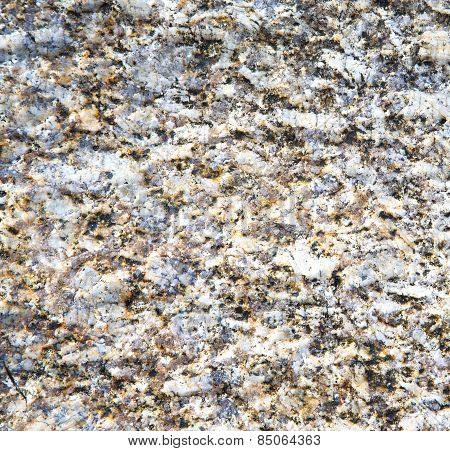 Footstep Kho Samui    Rock Stone Abstract Texture S