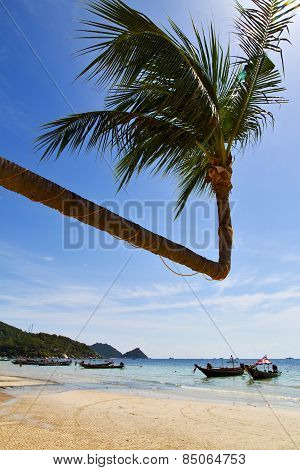 Sun Ligt Asia  The  Kho Tao Bay Isle White