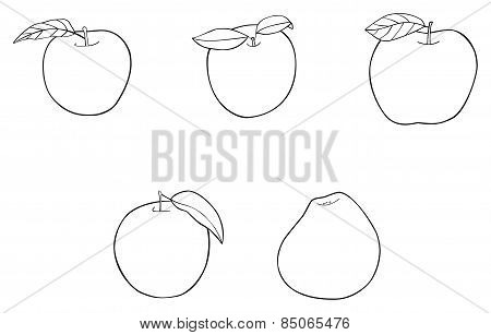 Delightful Garden - Set Of 5 Apples With Leaves