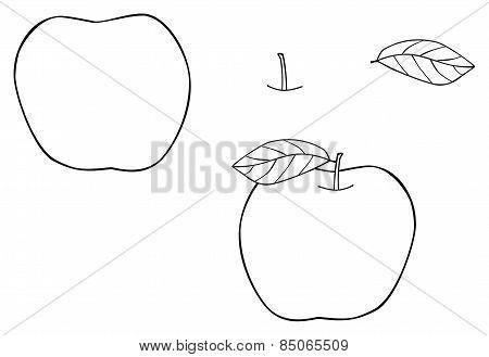 Delightful Garden - Bold Apple With One Leaf