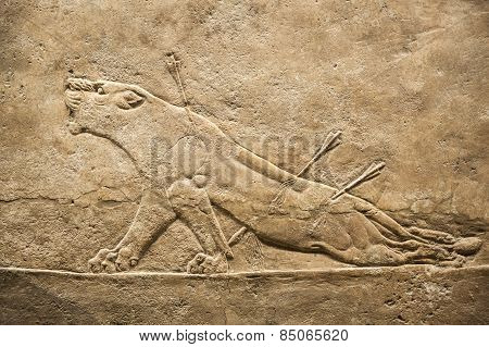 British museum. Relief from Palace of Assurbanipal in Nineveh, Assyria