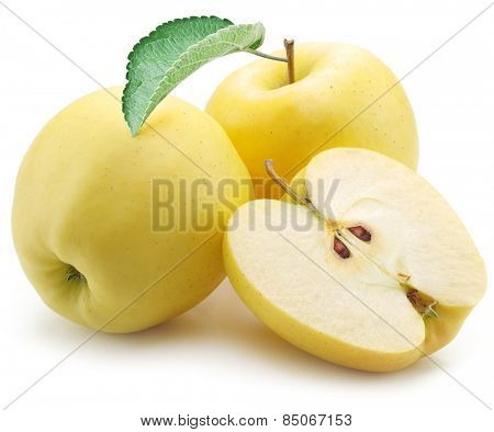 Yellow apples on a white background.