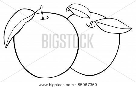 Delightful Garden - Set Of Two Apples With Three Leaves