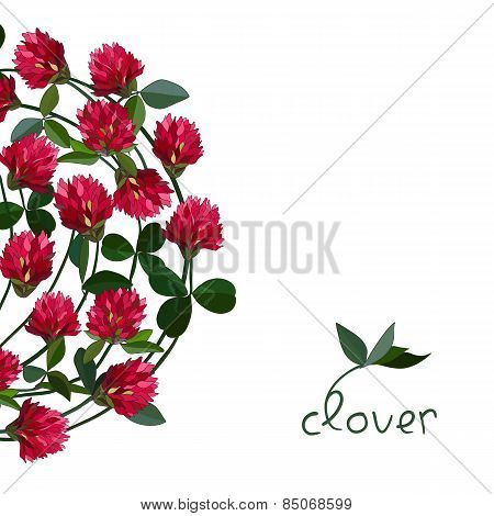 Vector floral card