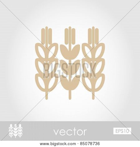 Spikelets Of Wheat Vector Icon