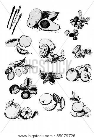 Vector illustration - bunch of organic fruits