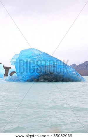 Icebergs on the Argentino Lake