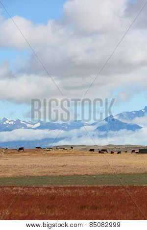 Overview of South Patagonia farmland