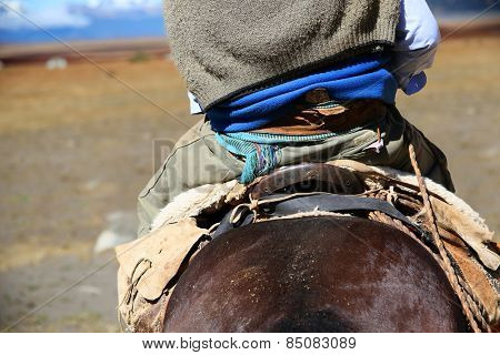 Back view of gaucho riding horse