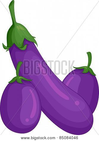 Illustration of a Pair of Freshly Picked Eggplants