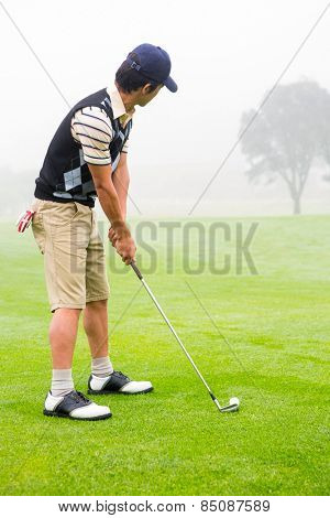 Concentrate golfer lining up his shot at the golf course