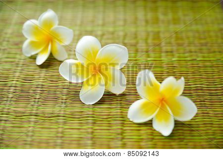 Three frangipani flower on green mat