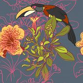 picture of toucan  - vector background Seamless floral background with petunia toucan - JPG