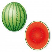 foto of watermelon  - Whole and Halved Watermelon Fruit Vector Icon - JPG