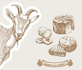 image of milk products  - Goat peeking from the corner and natural products which produced from goats milk - JPG