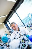 image of scientific research  - Senior male researcher carrying out scientific research in a lab  - JPG