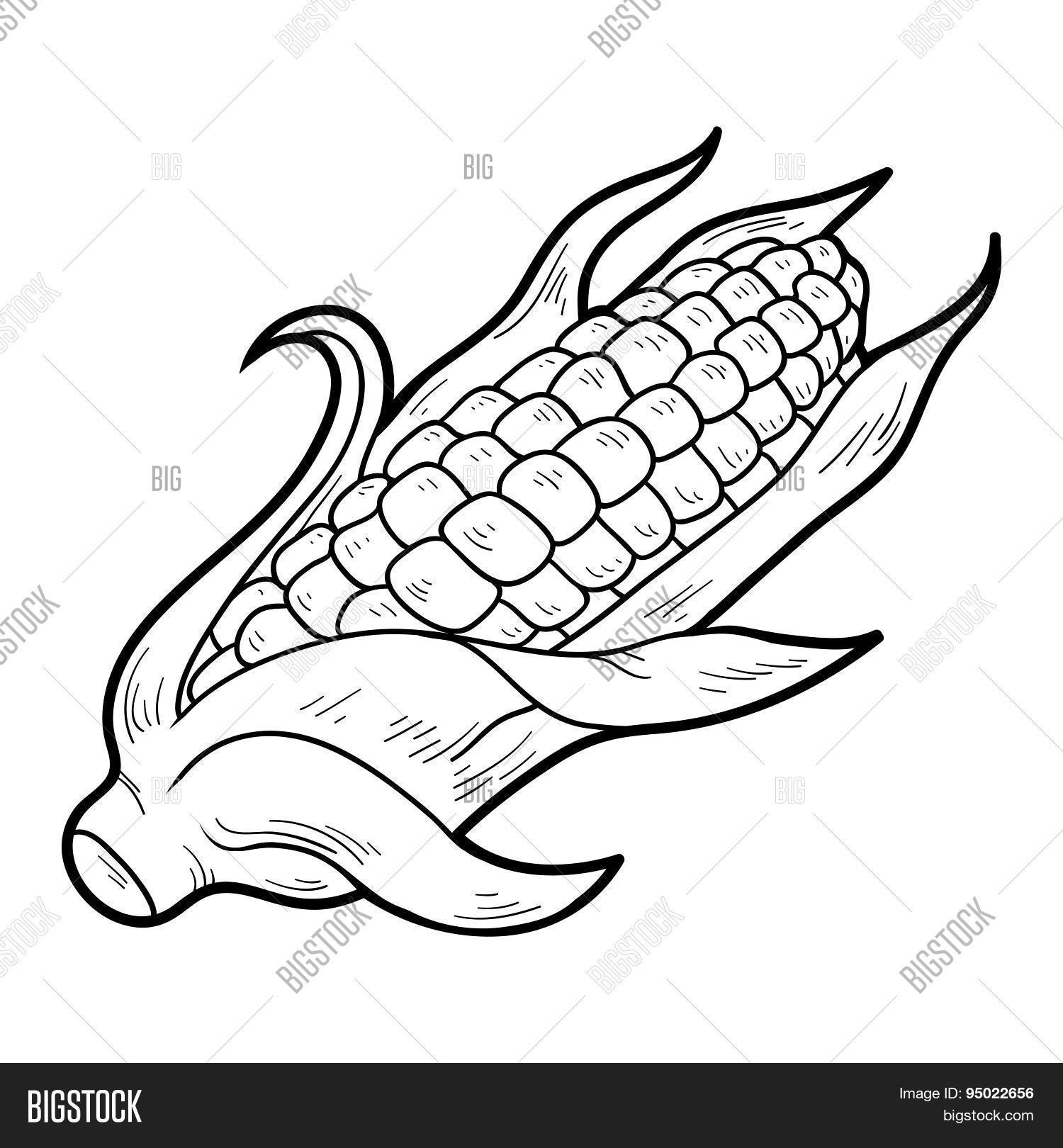 Coloring book pictures of vegetables - Coloring Book Fruits And Vegetables Corn
