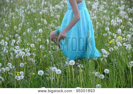 Girl In Blue Dress In Spring Field