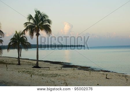 Beach Of Maria La Gorda, In Cuba