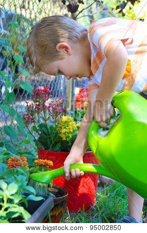 Boy Watering Flowers