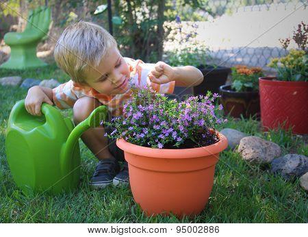Little Garden Helper
