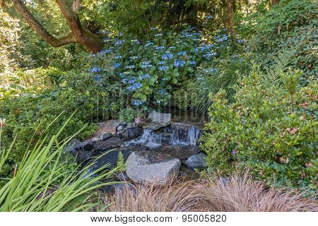 Stream With Blue Flowers