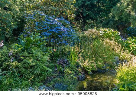 Stream With Blue Flowers 2