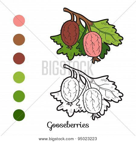 Coloring Book: Fruits And Vegetables (gooseberries)