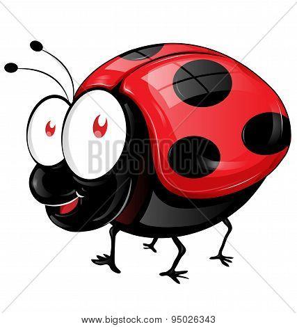 Ladybug Cartoon Isolated On White Background