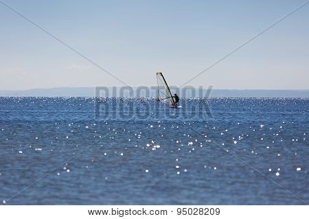 Windsurfers Swimming On Sea