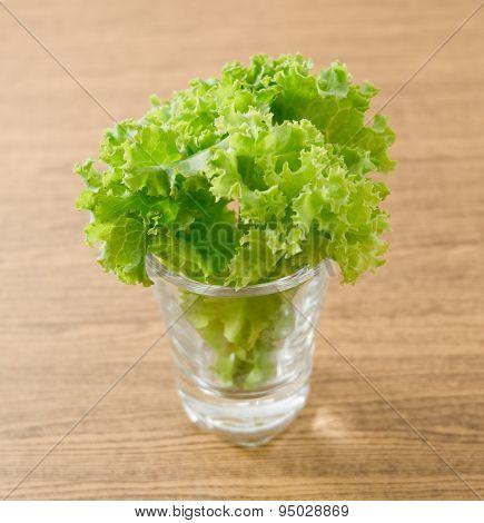 Fresh Green Lettuce Leaves In Small Glass