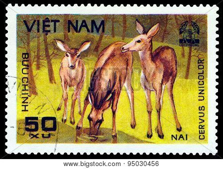 Vintage  Postage Stamp.  Sambar.