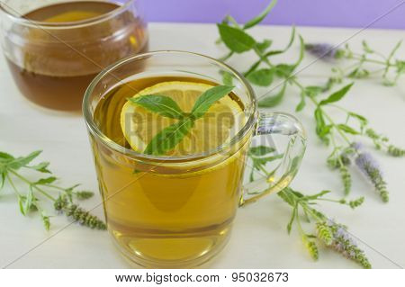 Mint Tea With Lemon On A Table With Mint Plant, Honey And Dipper  Spoon