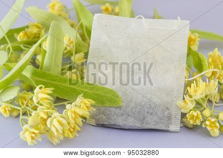 Linden Tea Bag With Lime Flowers In Blossom