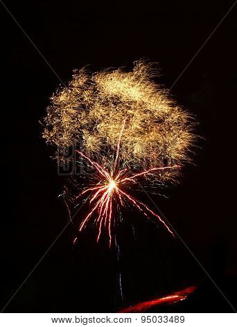 Night fireworks in the form of a jellyfish
