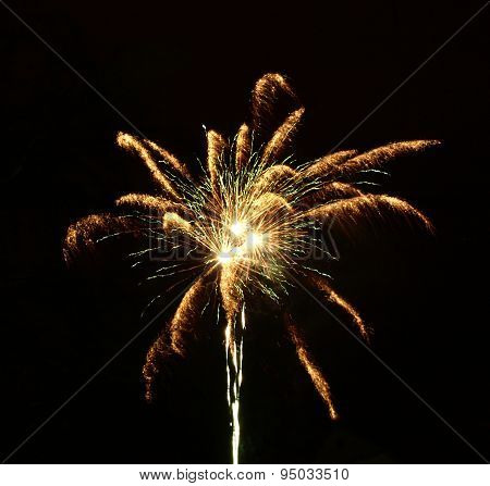 Night fireworks in the form of a lily