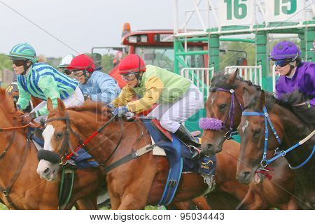 One Moment After The Start In The Horse Race