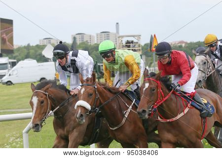 Tough Race Between Three Race Horses