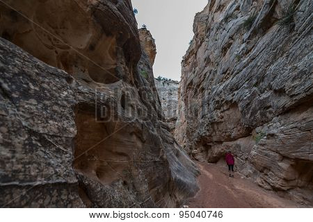 Hiker In South Cottonwood Narrows Near Road 400 Utah