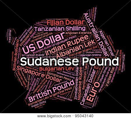 Sudanese Pound Means Currency Exchange And Coinage