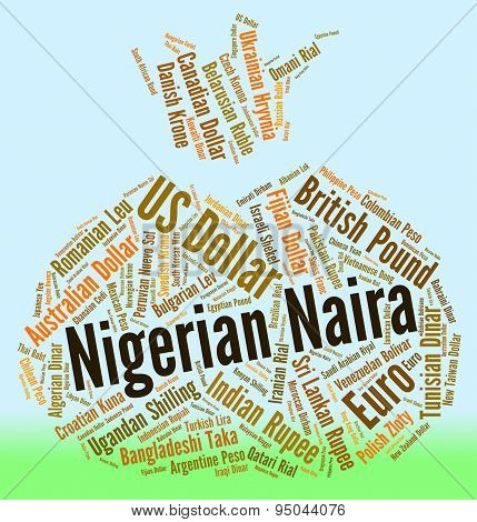 Nigerian Naira Means Foreign Currency And Forex