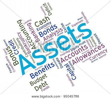 Assets Words Represents Owned Capital And Holdings