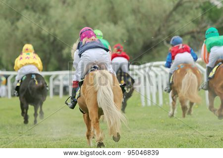 Rear View Of A Group Of Racing Ponys