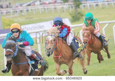 Tough Race Between Three Pony Race Horses
