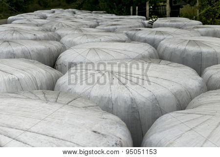 White Hay Bales Background