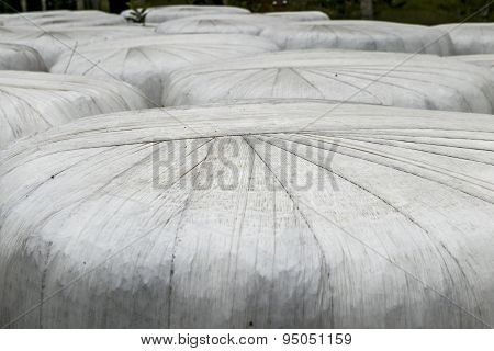 Closeup Of Wrapped Hay Bales