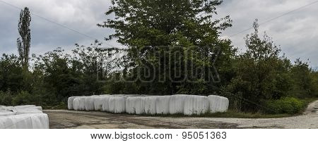 White Colored Bales